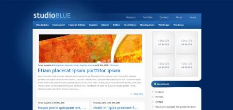 studio-blue-wordpress