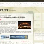 PaperCut WordPress Theme - WooThemes